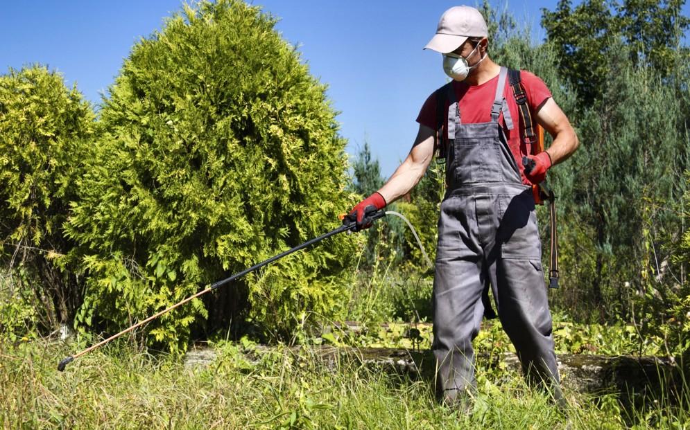 Mdf il comune vieti l 39 uso del diserbante glifosate for Diserbante per erbacce