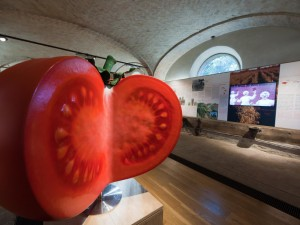 Museo del Pomodoro_interno01