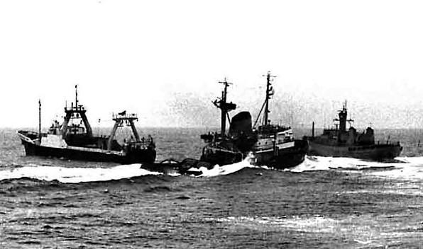 1 settembre 1958 scoppia la guerra del merluzzo tre for Casa del merluzzo