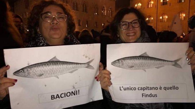 sardine-678x381.jpg