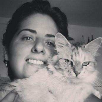 I Gatti Siberiani Hanno Cambiato La Mia Vita